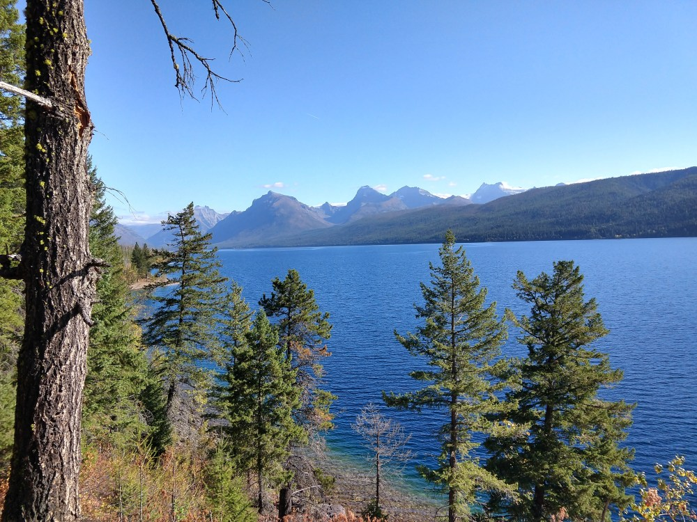 Along the Lake McDonald Trail
