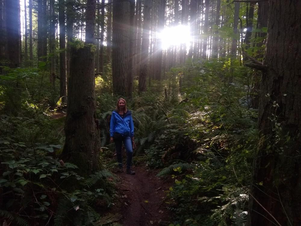 County park trail on Camano Island