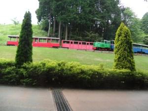 汽車だー!!