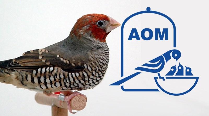 10 Mostra Ornitologica 2003
