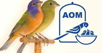 12 Mostra Ornitologica 2006