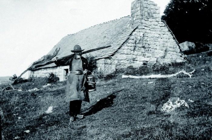 Buronnier dans le Cantal