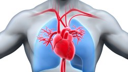 Cardiovascular Evaluation Specifications - AOPA