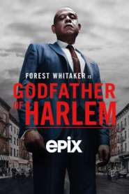 Godfather of Harlem – 1ª Temporada Completa (2020) Dublada / Dual Áudio 720p 1080p MKV