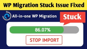 [SOLVED] All in one WP migration stuck at 100%- How to fix? 1