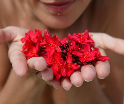 16463-4-tarjetas-te-regalo-flores