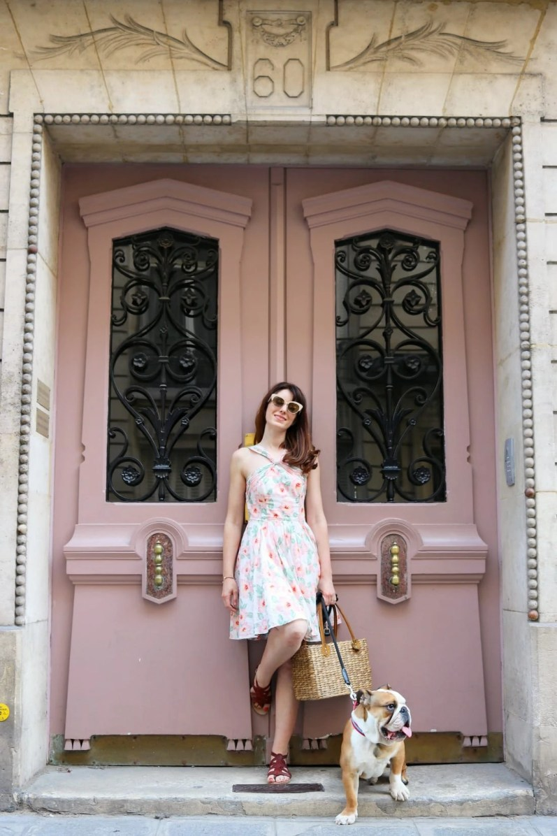 Beautiful Pink Parisian Door