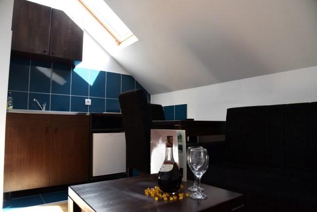 prodaja-apartmana-banja-koviljaca-17-I (9)