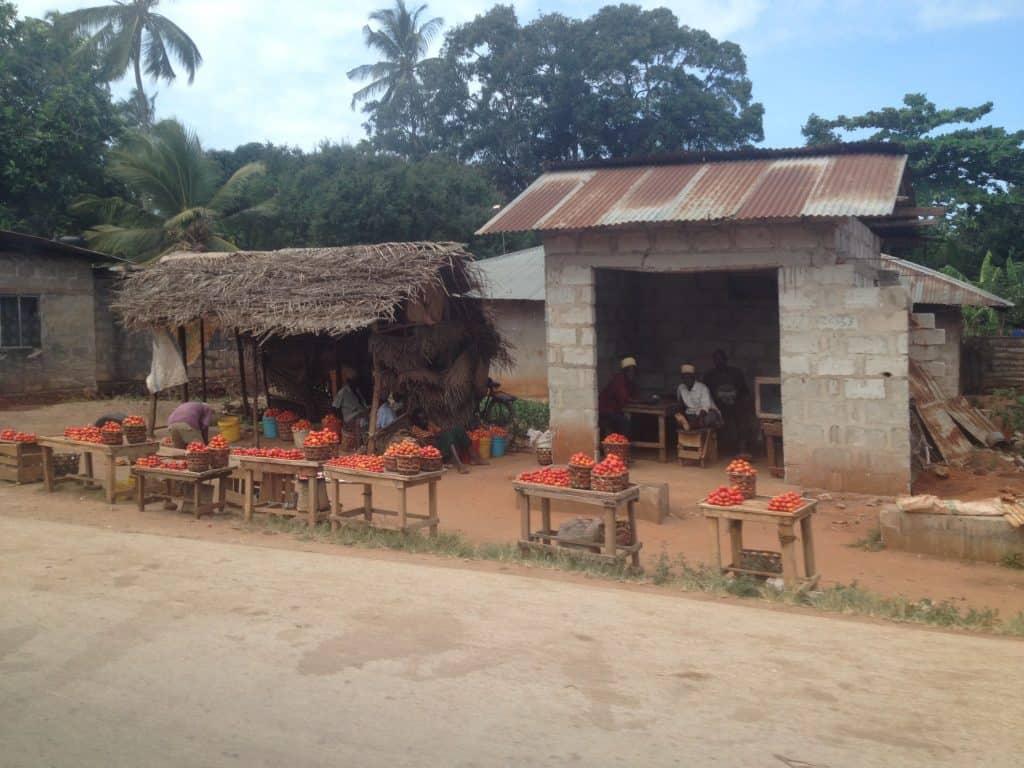 zanzibar, vita, povertà, africa