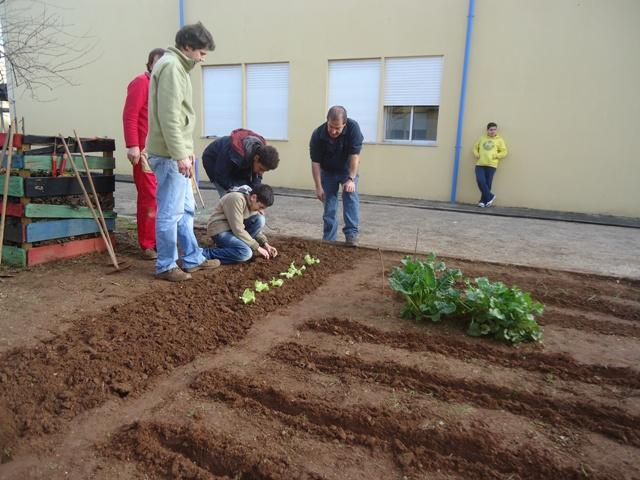 Eco-Escolas3