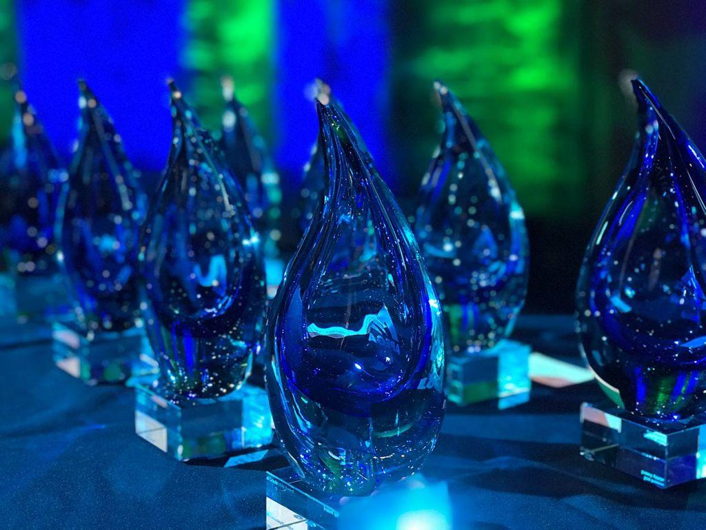 APEGA Summit Awards