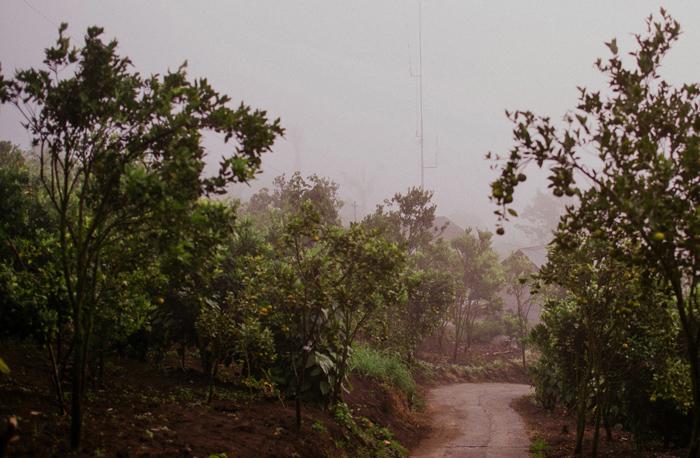 apelphotography-preweddinginbali-balipreweddingphoto-baliwedding-lombokweddingphotography-lembonganprewedding_pandeheryana_1