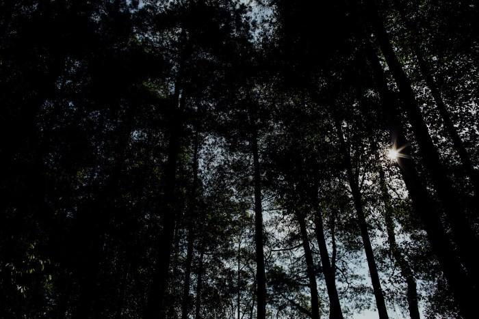 baliweddingphotography-balibasedweddingphotographers-apelphotography-pandeheryana-baturmountprewedding-bestweddingphotographers-41
