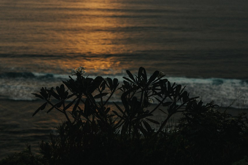 apelphotography-baliweddingphotography-lombokwedding-lembonganwedding-uouwatusurfvillawedding-bestweddingphotographersinbali_99