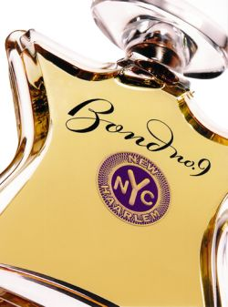 new haarlem bond no.9
