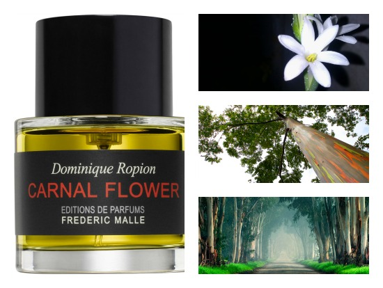 Carnal Flower Frederic Malle Perfume