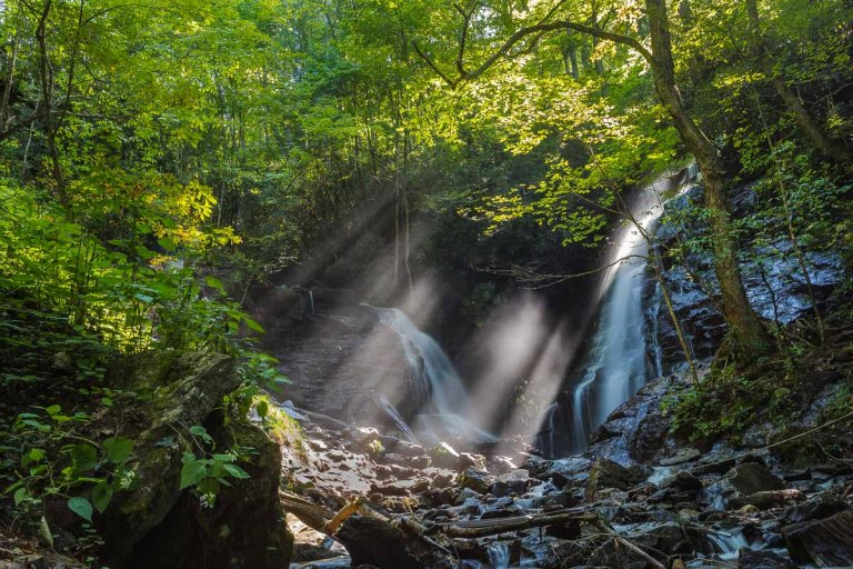 Sun Rays Shining Through Dense Trees at Soco Falls