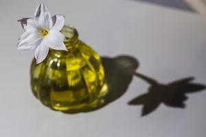 White Rain Daisy in a yellow glass vase