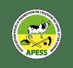 APESS Afrique