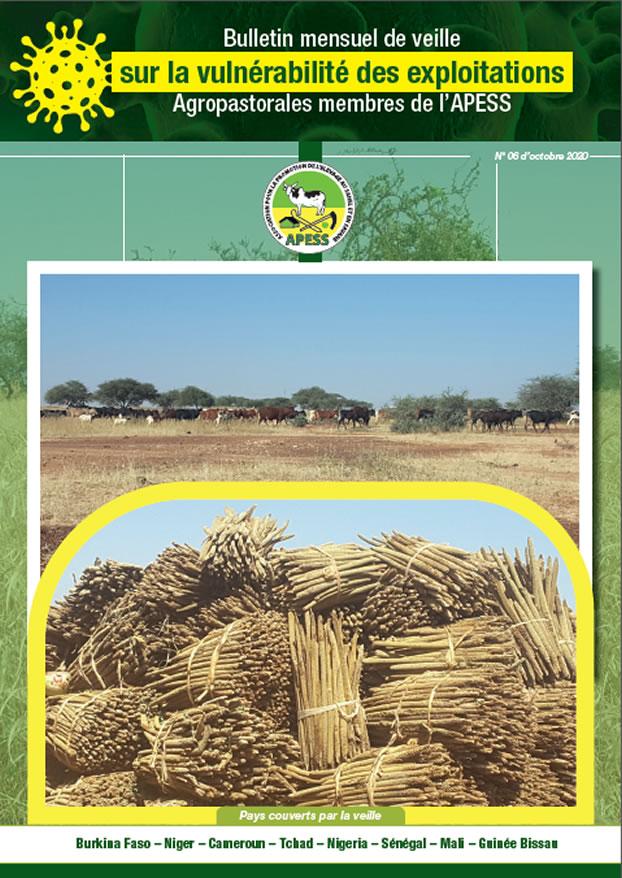 6ème Bulletin mensuel de veille sur la vulnérabilité des exploitations agropastorales membres de l'APESS.
