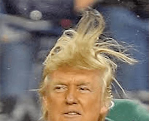 Donald-Trump-hair-3