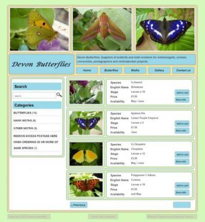 Devon Butterflies