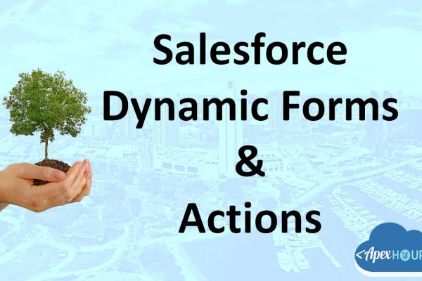 Salesforce Dynamic Form & Dynamic Action