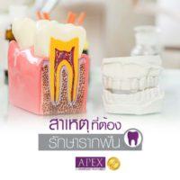 AW_Website-11-June-4