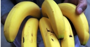 Brazilian Companies Win the Bidding for Banana Kingpin Chiquita