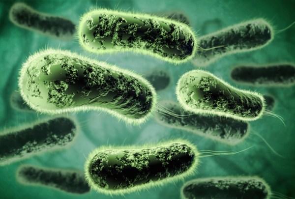 """robot bacteria"""