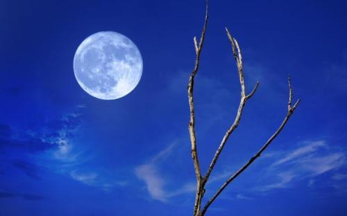 """""""blue moon sky"""""""