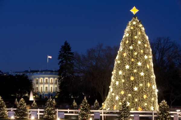 """white house christmas"""