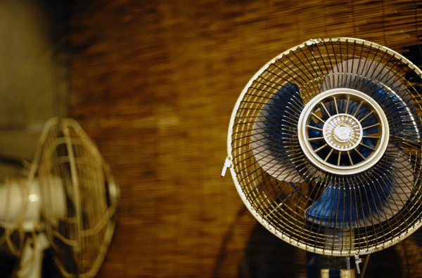 Electric fans should not be used by older people.