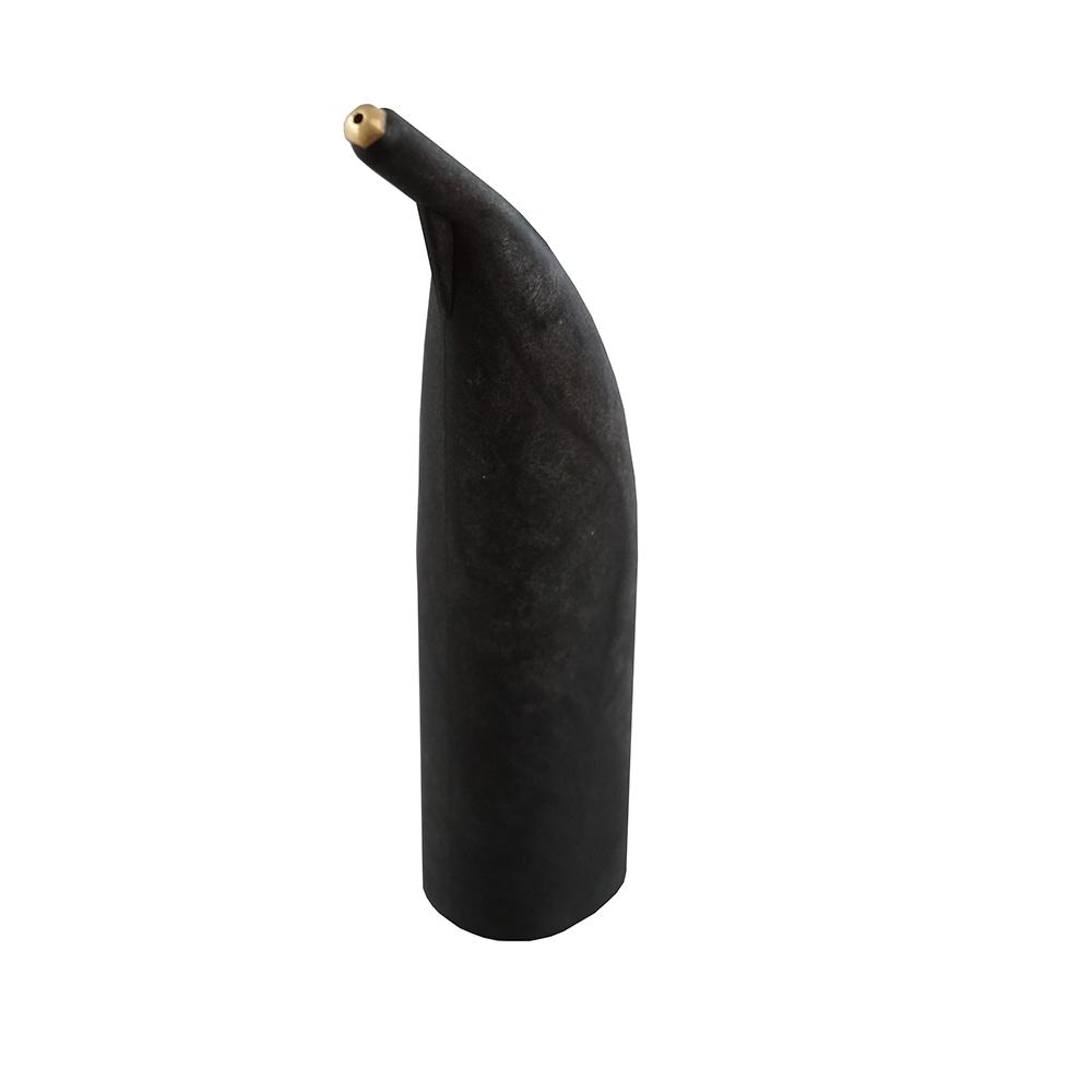 accessoires- nettoyeur-vapeur-professionnel-apfn-hygiène