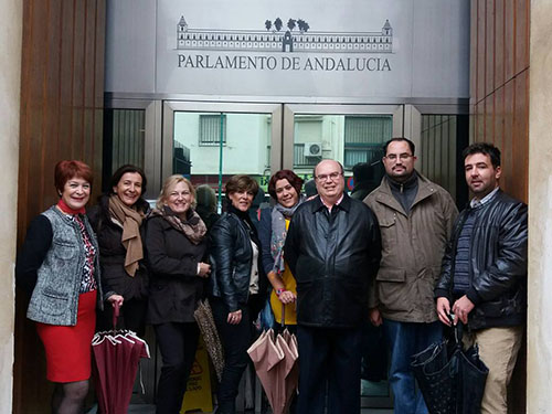 Foto: Legislación - Proposición no de ley por los derechos de las personas con epilepsia en el Parlamento de Andalucía