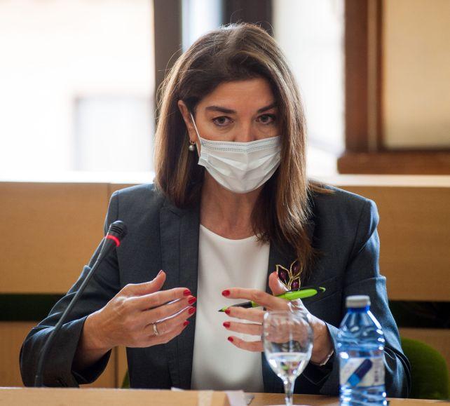 Carmen Becerril, Vicepresidenta Ejecutiva de OMIE, durante su intervención en el debate sobre Transición Energética organizado por la APIE en la Universidad de Alcalá de Henares