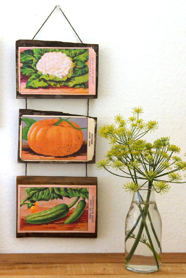 Free Printable Vintage French Seed Packets Wall Decor