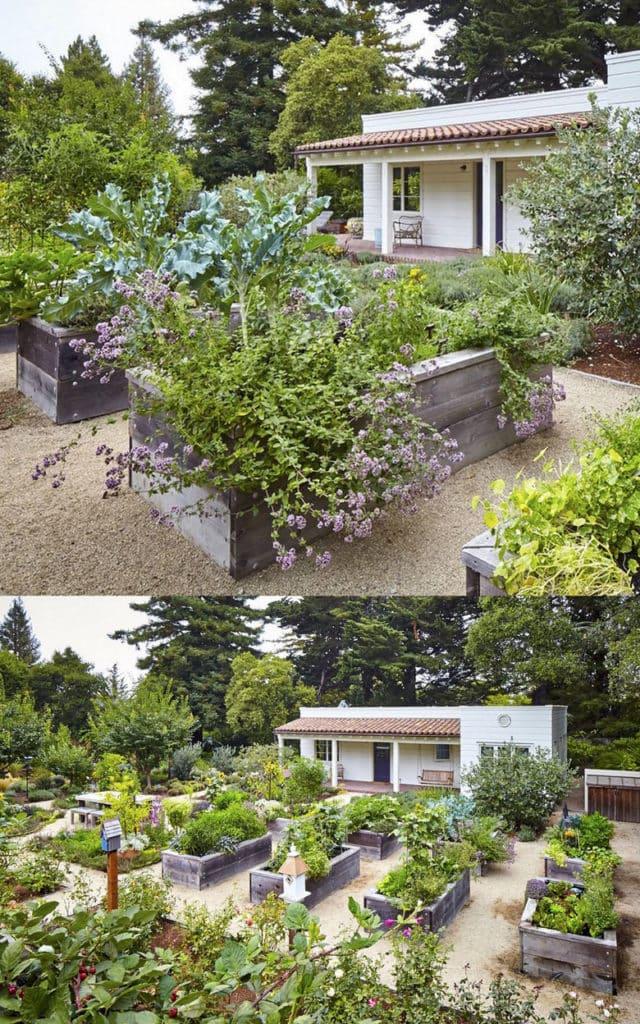 Vegetable Garden Layout 7 Best Design Secrets A Piece Of Rainbow