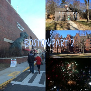 Travel | Boston 2014-15 Part 2