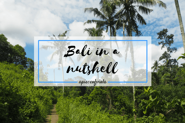 Bali in a Nutshell | Gap Year Travel