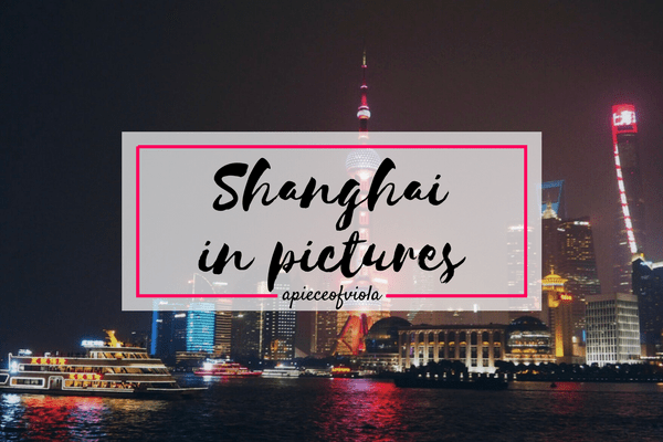 Shanghai in Pictures | Travel Diaries