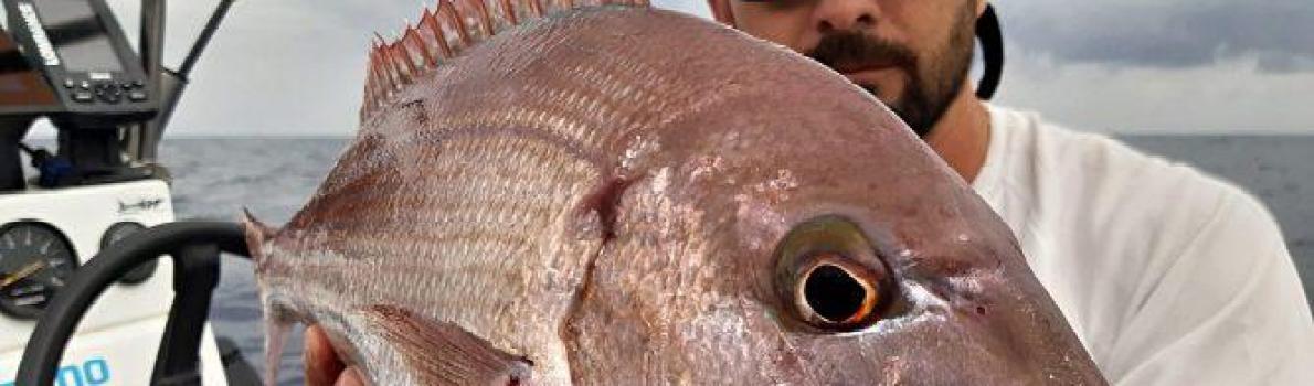 Jornadas de pesca tras la cuarentena, sigue igual o quizás peor.
