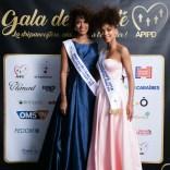 apipd-gala-2019-233