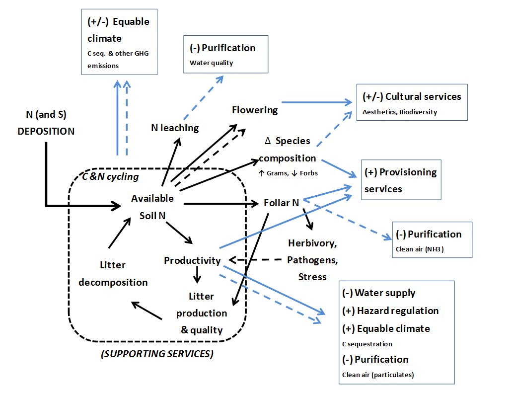 Ecosystem Services And Air Pollution Impacts