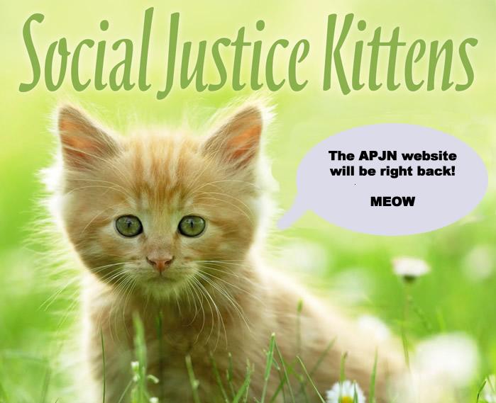 APJN.SJ.Kittens