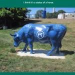 Rockhurst blue bull
