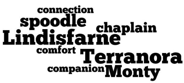 monty1