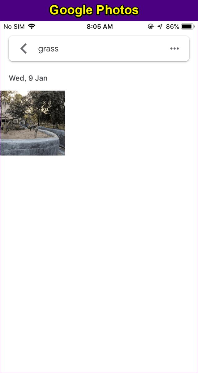 Google Fotos Vs Icloud 8