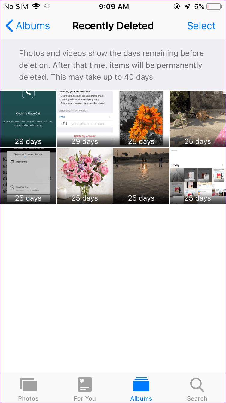 Excluir fotos do Google Fotos, mas não do Icloud 7