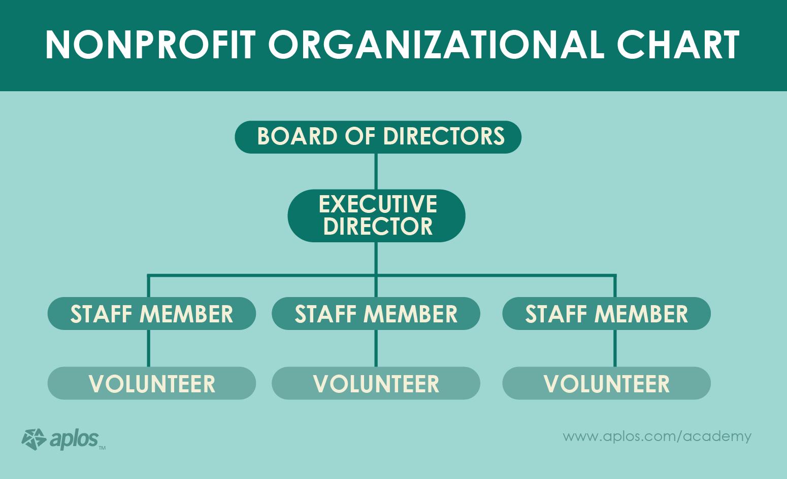non profit structure organizational chart